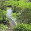 Gestion intégrée de l'eau et des milieux aquatiques, quel état des lieux pour le