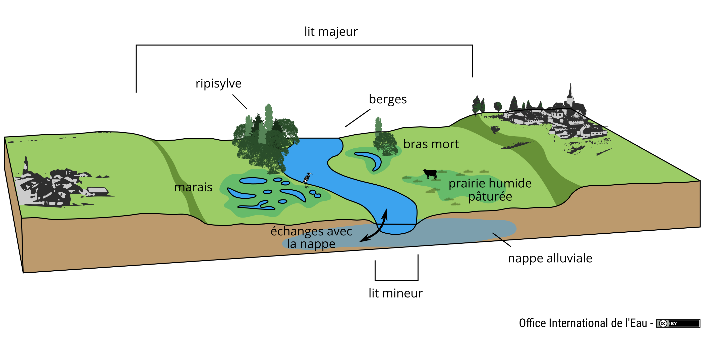 Schéma du lit majeur d'un cours d'eau