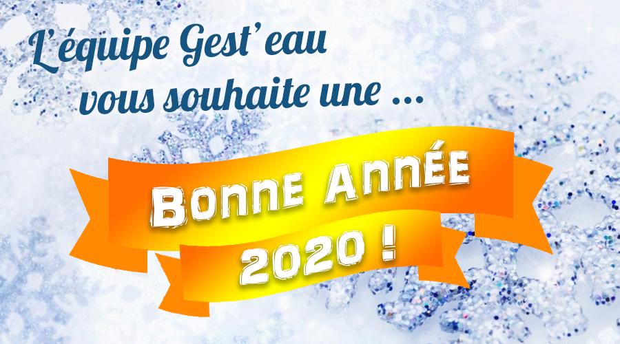 gesteau_bonne-annee.png